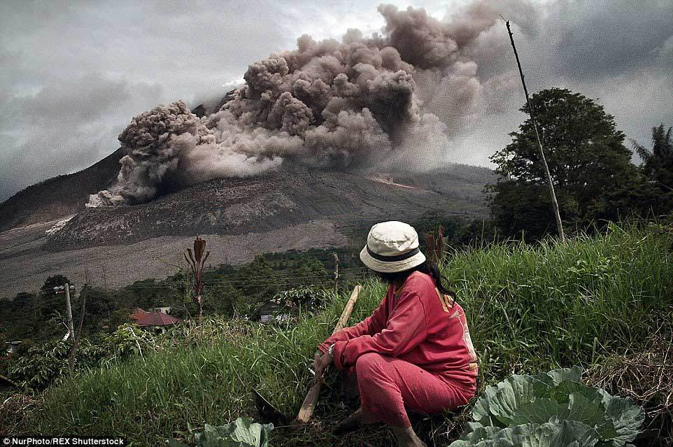 núi lửa, Indonesia, sơ tán