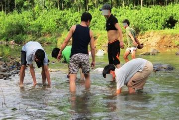 Săn rùa vàng 350 triệu/kg: Chấn động dân Hà Tĩnh