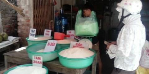 gạo giả, gạo nhựa, hóa chất, tẩy trắng, nhiễm độc, thạch tín, ung thư, thuốc độc, côn trùng, gạo thơm, hương liệu, gạo-giả, gạo-nhựa, hóa-chất, tẩy-trắng, nhiễm-độc, thạch-tín, ung-thư, thuốc-độc, côn-trùng, gạo-thơm, hương-liệu
