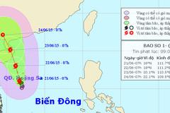 Áp thấp nhiệt đới mạnh lên thành bão cấp 10