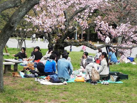 du học, tiền tỷ, Nhật Bản