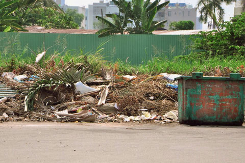 rác, cỏ mọc, vỉa hè