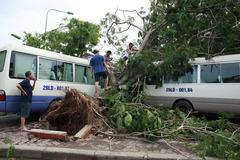 Mưa dông, đề phòng gió giật ở khu vực Hà Nội