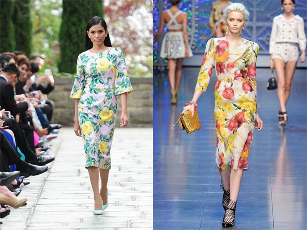 NTK Đỗ Mạnh Cường, thời trang, thương hiệu, D&G