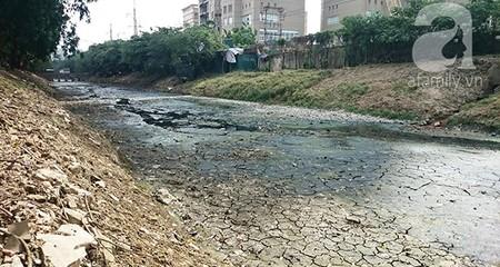 Cảnh tượng hãi hùng trong những sông, mương 'chờ chết' ở Hà Nội