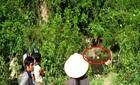 Thời sự trong ngày: Truy bắt hung thủ giết 4 người rúng động