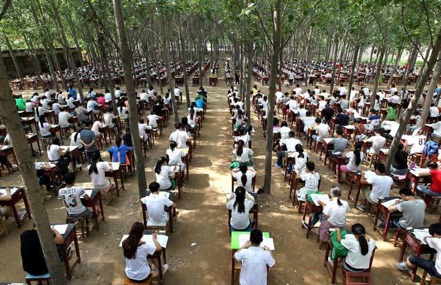 Hình ảnh 800 học sinh ngồi thi trong rừng