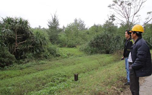 UBND tỉnh Hà Tĩnh, chấm dứt, dự án, pháp luật