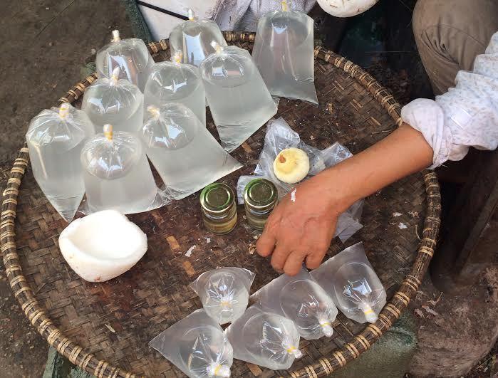Tranh nhau mua nước dừa 20 ngàn/lít ở Hà Nội