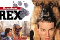 5 phim truyền hình thế hệ 8x, 9x 'mê như điếu đổ'