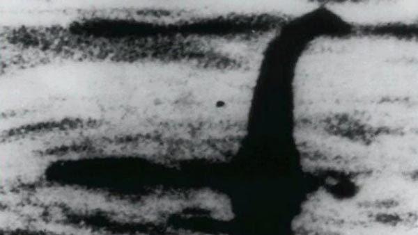quái vật, hồ Loch Ness, cá nheo, sinh vật huyền bí, tiền sử, cá da trơn
