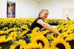 Những bông hoa hướng dương tưởng nhớ nạn nhân MH17