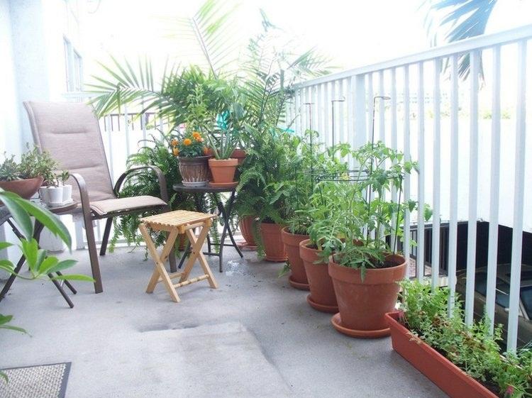 Bí quyết, trồng rau, rau sạch, ban công