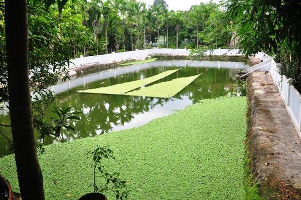 Phá dỡ biệt phủ 100 tỷ xa hoa trên đèo Hải Vân
