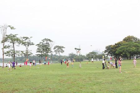 Ngoạn mục lễ hội diều trong công viên Yên Sở
