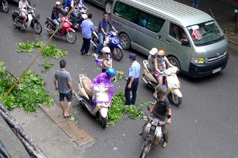 Hà Nội: Cành gây gãy rơi vào người đi đường - 2