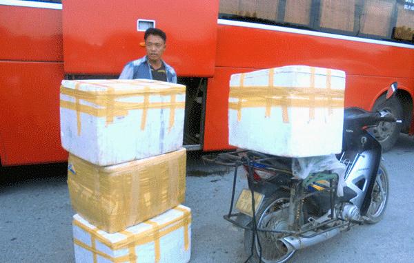 Đường dây buôn hàng tấn châu chấu ướp lạnh xuyên Việt