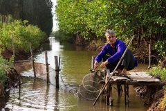 12,5 triệu Euro giúp Việt Nam bảo tồn hệ sinh thái ven biển