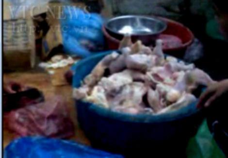gà chết, cá thối, lợn ốm, tôm bẩn, quán cơm