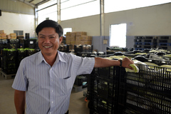 Ông chủ HTX đưa từng gánh rau bỏ chợ