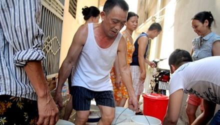 Đặc sản châu chấu xuyên Việt chiều dân nhậu