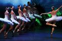 """Khoảnh khắc đẹp của vở ballet """"Hồ Thiên Nga"""" tại Việt Nam"""