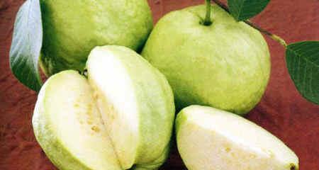Mùa thu, ăn hoa quả chính vụ vừa ngon vừa sạch
