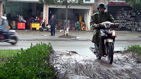 Nguyễn Xiển; Thủ đô; dải phân cách