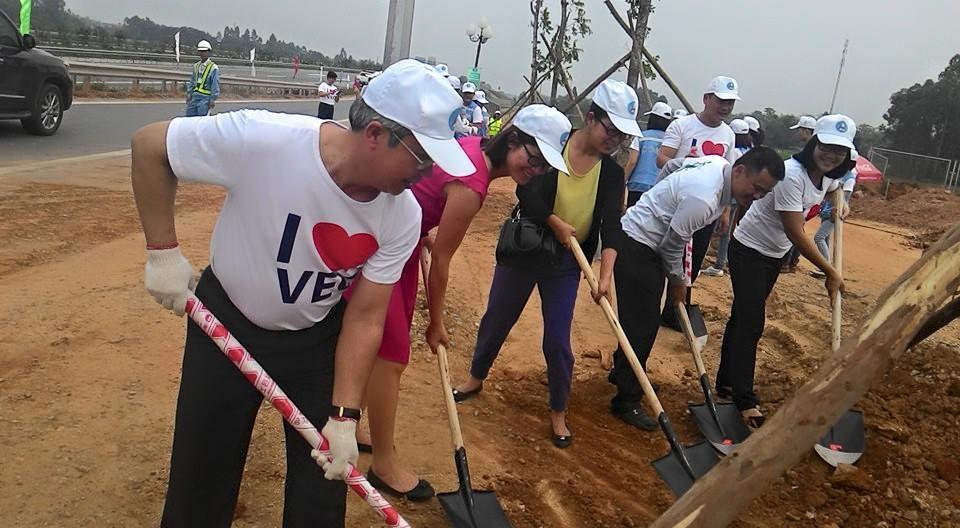 trồng cây, cao tốc, Nội Bài - Lào Cai