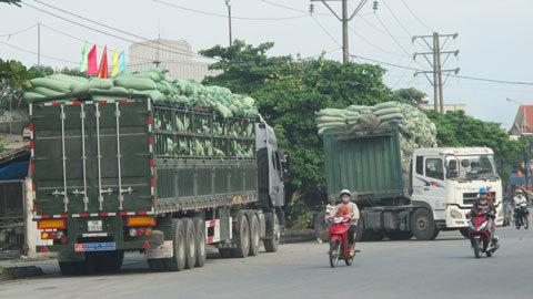 cảng biển, xe quá tải, thanh tra giao thông, xe quá tải